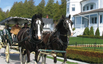 Frankenmuth & Mackinac Island – Bus 3