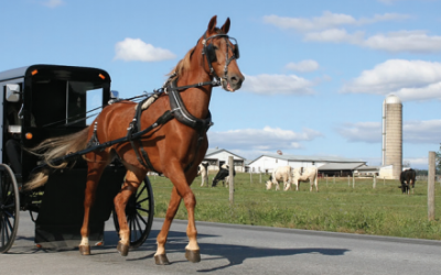 Indiana Amish Experience August, 2019