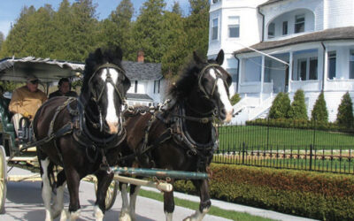 FRANKENMUTH & MACKINAC ISLAND